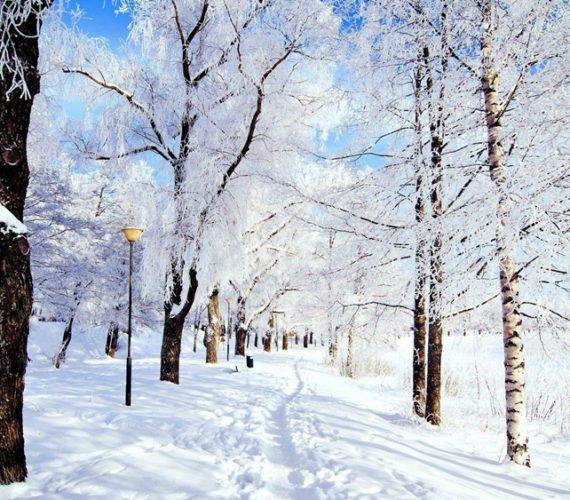 100 дел, которые нужно сделать зимой: полный список