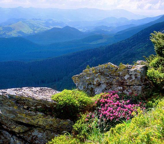 Похід в Карпати влітку 2021 – неймовірні емоції і відпочинок для душі