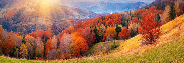 Как провести отпуск осенью?